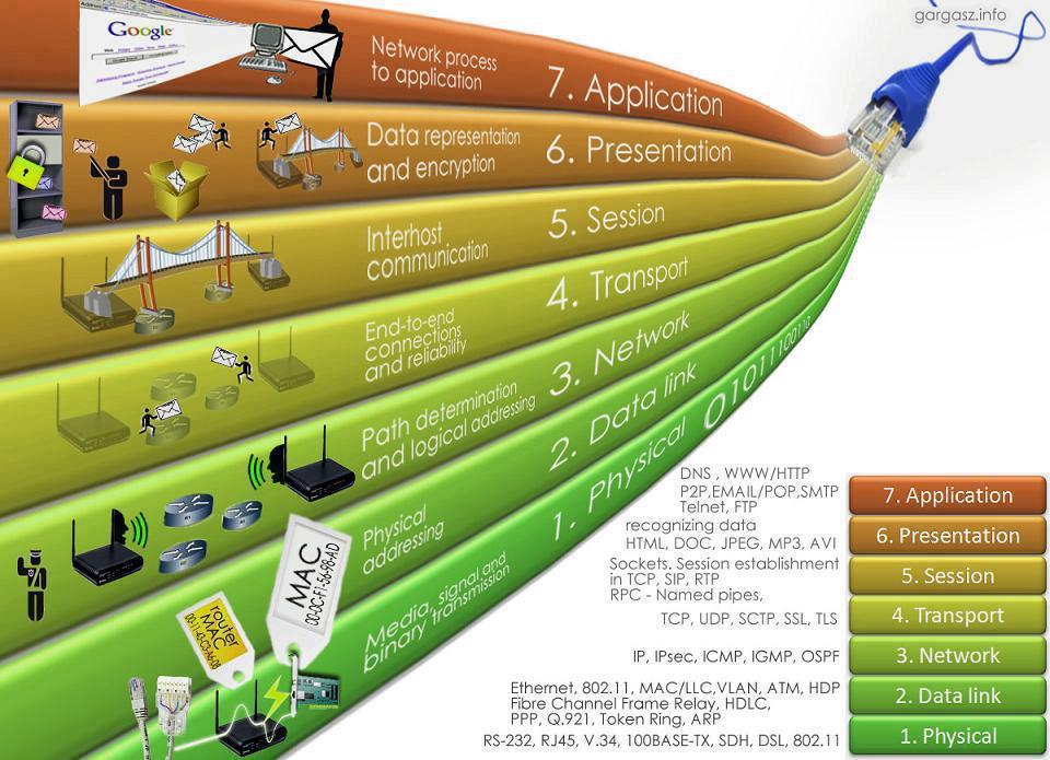 Network Layer Protocols & IP address | Study Bookz